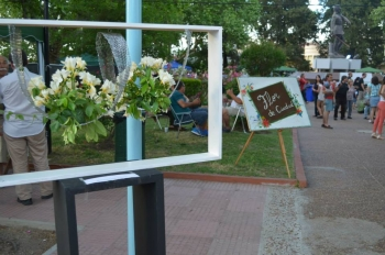 Paysandú Flor de Ciudad